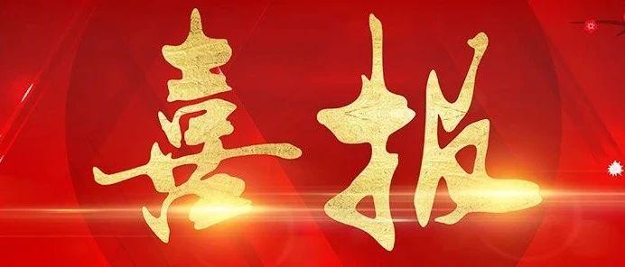 厲害了!中國房地產500強測評成果公布,廣東偉業鋁廠攬獲三項殊榮
